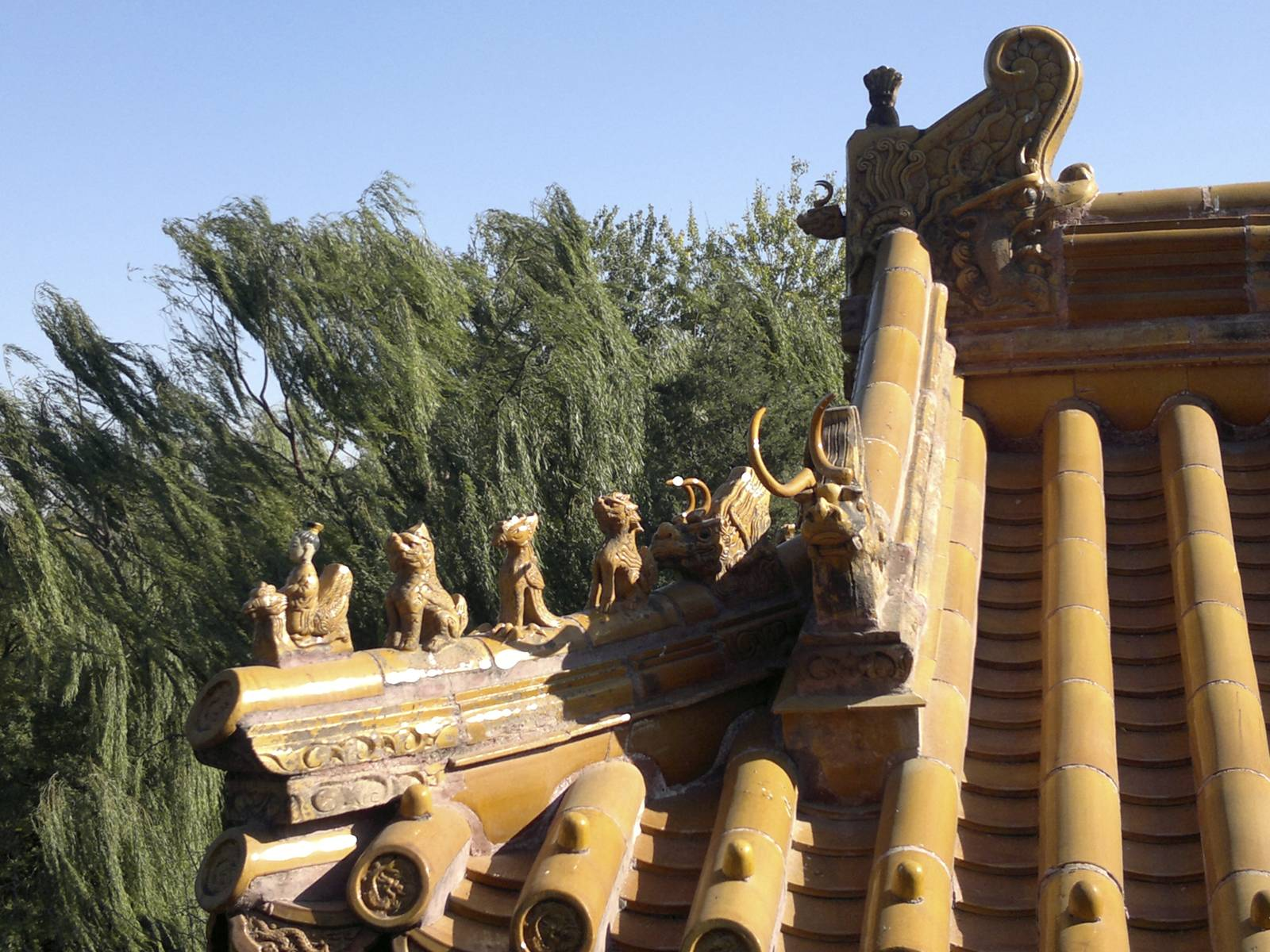 Cina-China-dragon-roof-detail-temple-pagoda