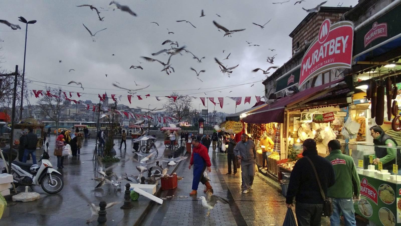 Istanbul-turkey-turchia-mercato-del-pesce-gabbiani-fish-market-seagull-viaggio-in-oriente