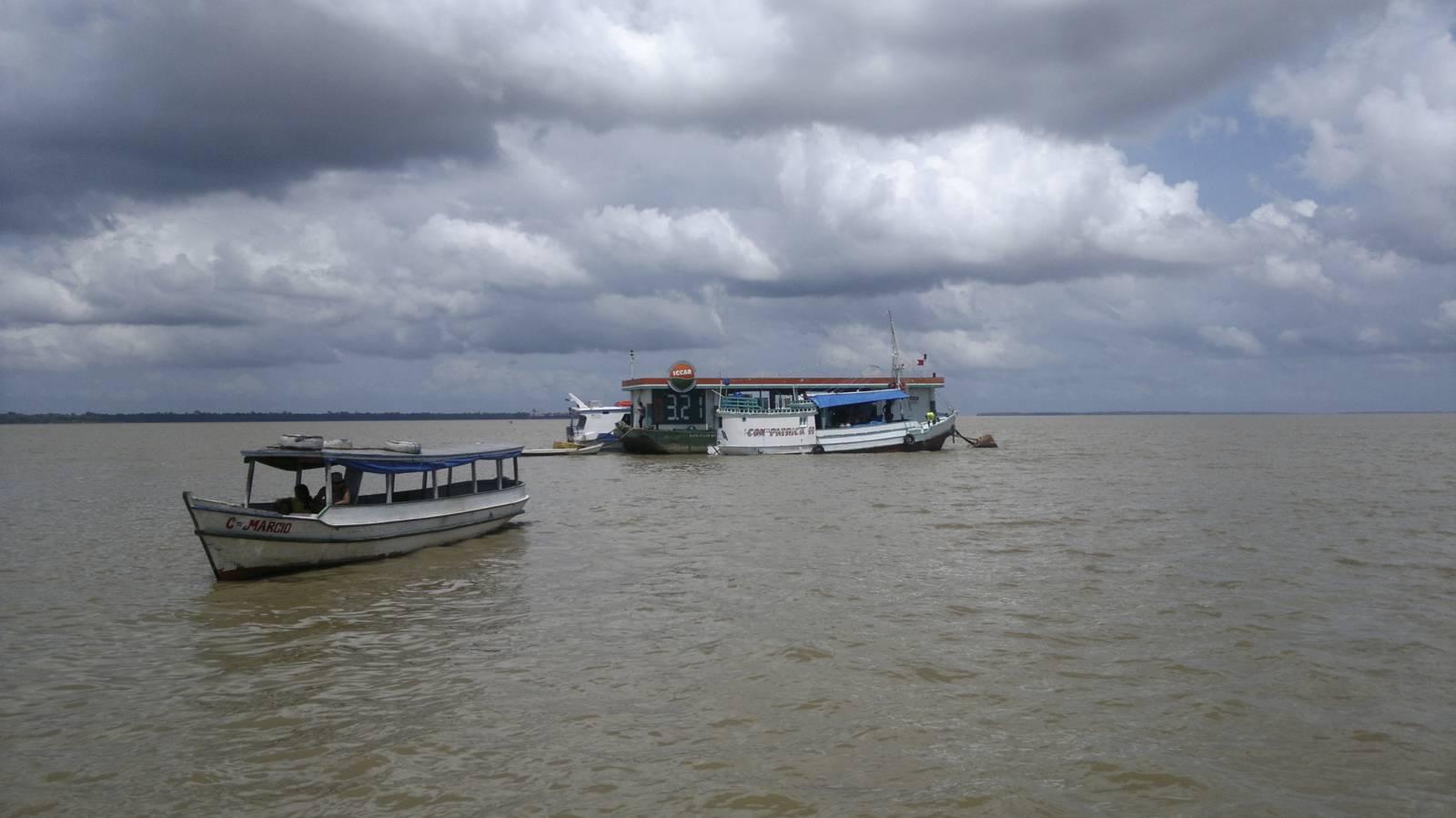 amazonia-foreste-fiumi-animali011
